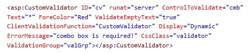 CustomValidatorSampleCode