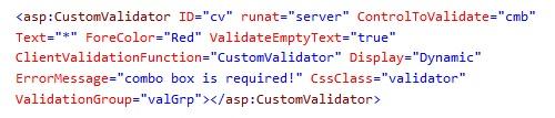 CustomValidatorSampleCode